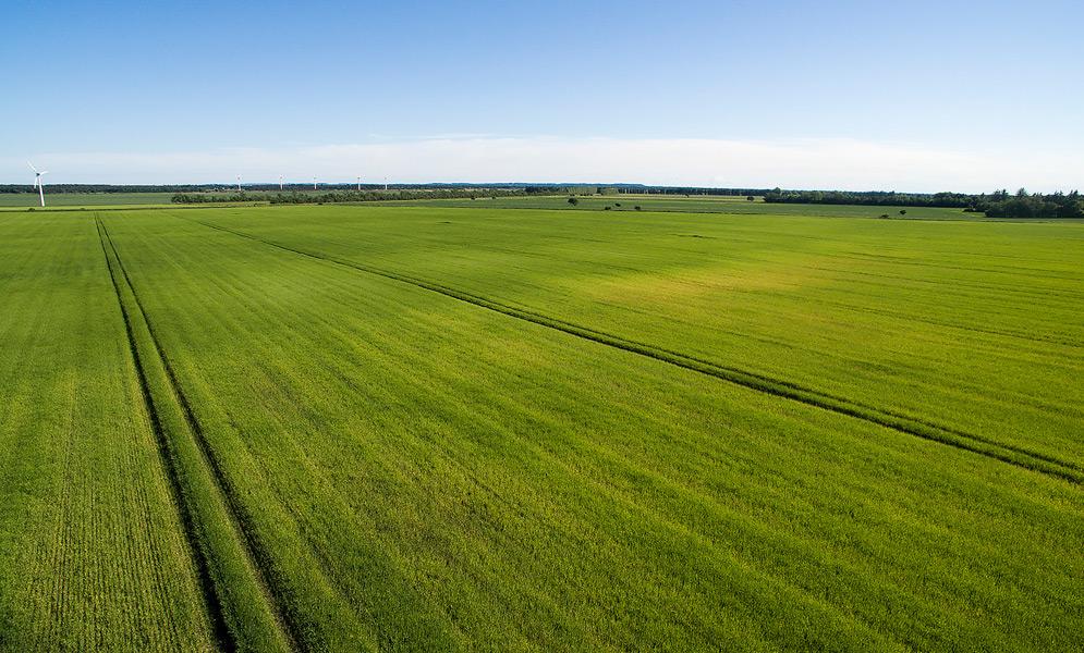 Landbrug2